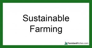Sustainable farming for beginners
