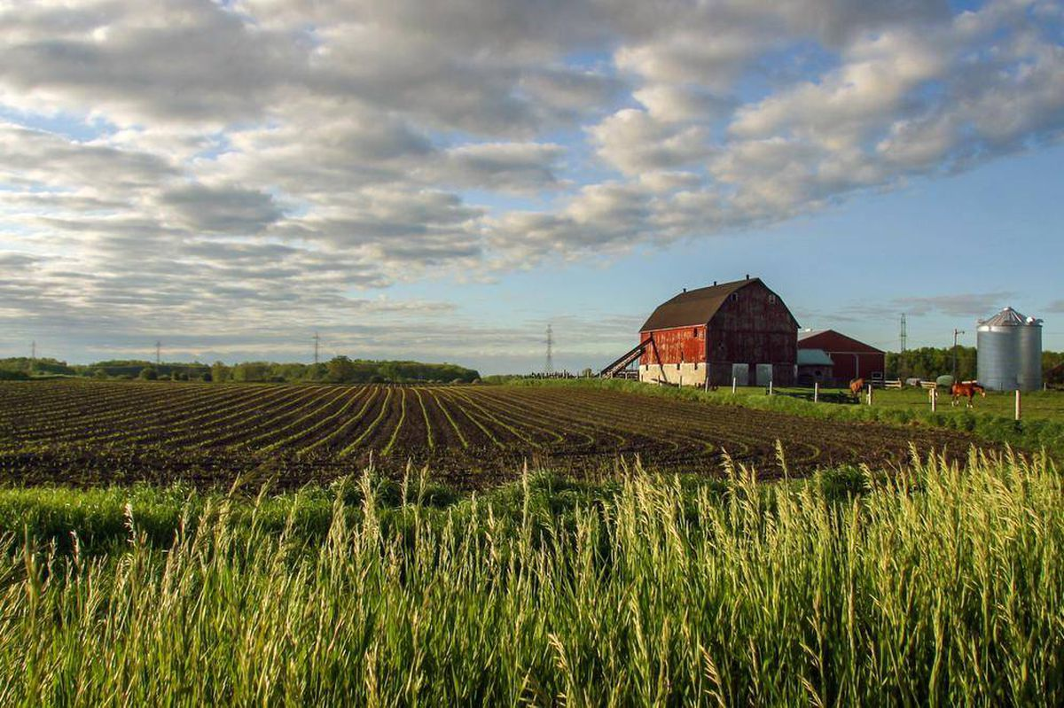 Invest in Canadian Farmland
