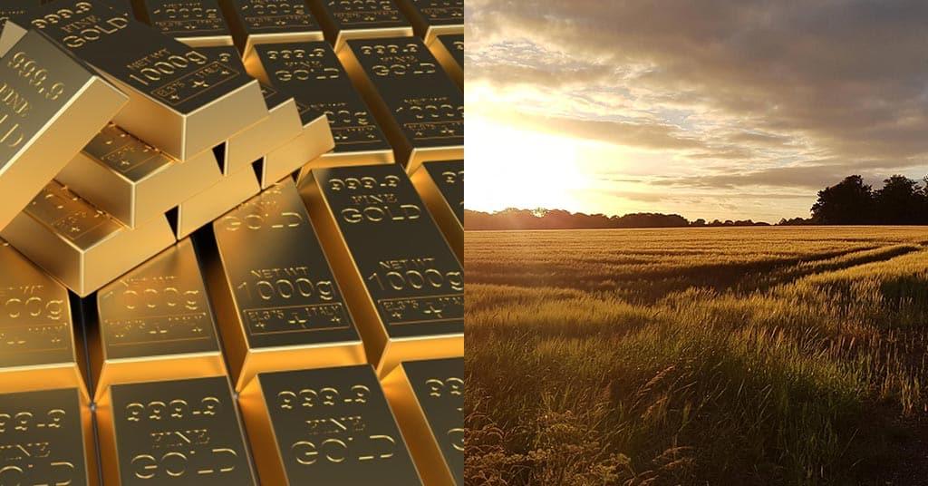 Investing in farmland versus investing in gold