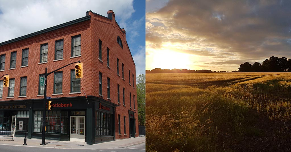 Farmland investing vs real estate investing
