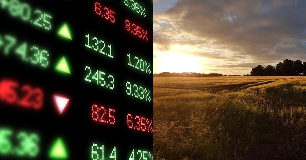 Investing in farmland versus the stock market